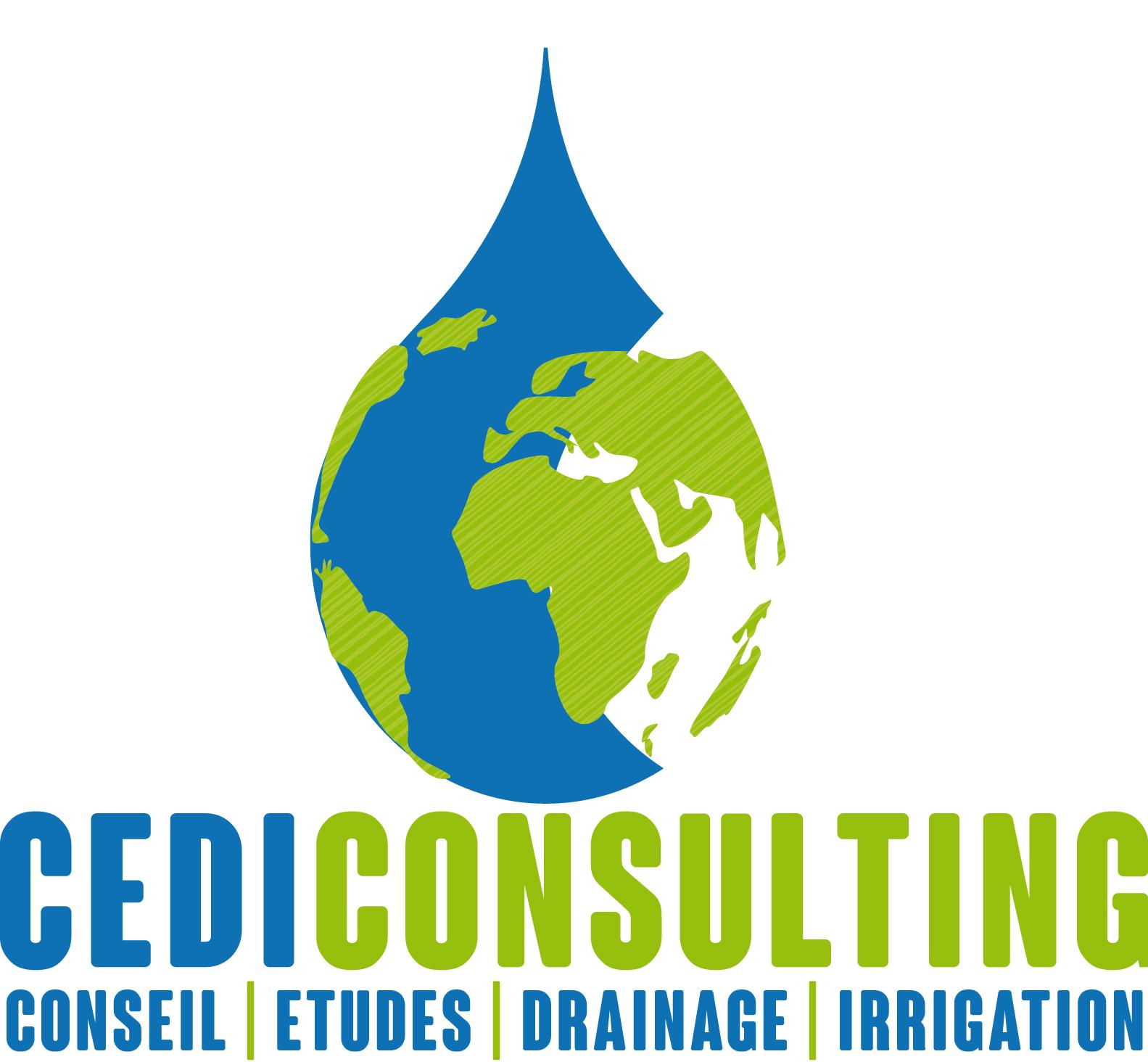 CEDI CONSULTING | Création | Logo Vectoriel