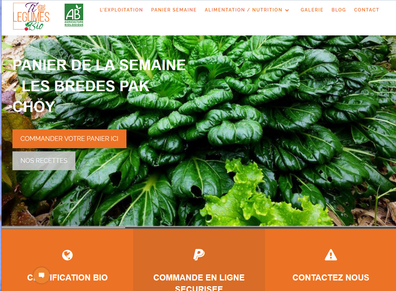 Ti'Légumes Bio | Création | Site Web